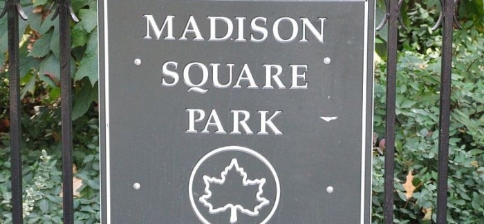Flatiron Hot! Q&A: Madison Square Park Christmas Tree Lighting