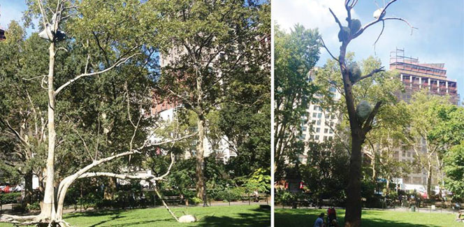 "Giuseppe Penone ""Ideas of Stone"" Tree Sculptures Sprout in Madison Square Park"