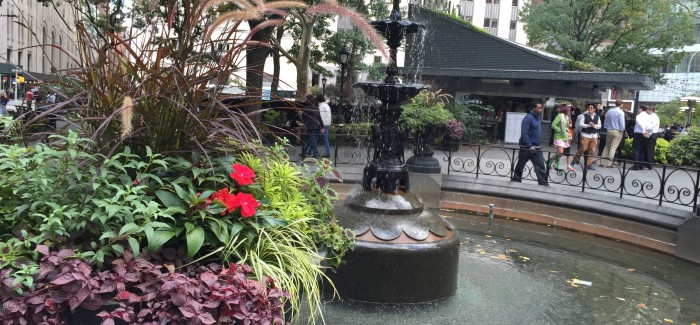 5 Fun Facts About Madison Square Park!