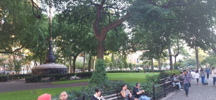 A quick stroll through union square park on a sunny fall afternoon union square park looking good sciox Image collections